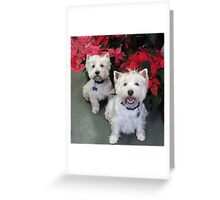 White Westie Christmas Greeting Card