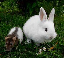 Wilbur and Sookie by Kayley Hodson