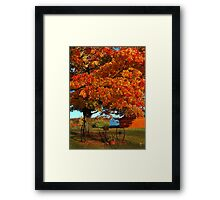 Adirondack October Color Framed Print