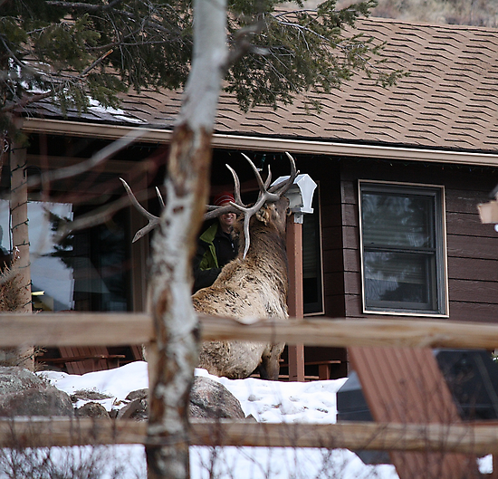 Just Another Sunday In Estes Park..... by Shilohlin Pfeiffer