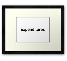 expenditures Framed Print