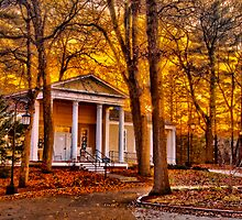 Harambee House  by LudaNayvelt