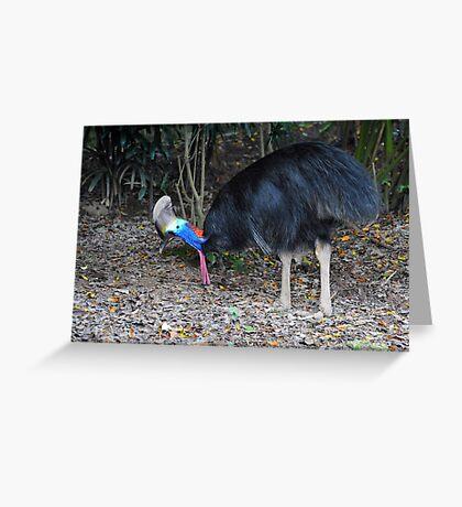 Cassowary - Singapore Greeting Card