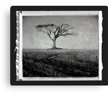 Rihanna Tree Canvas Print
