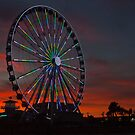 Wheeling the Night Sky by Ree  Reid