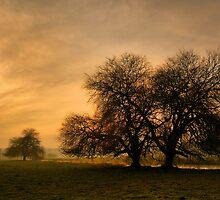 A Winters Tale by Stuart Chapman