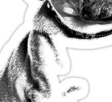 pug, i love pugs, cute pug Sticker