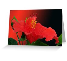 """Flamenco dance"" Greeting Card"