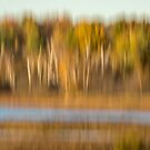 Fall Marsh Abstract 2015-1 by Thomas Young
