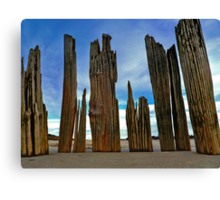 Fort Tilden Driftwood5 Canvas Print