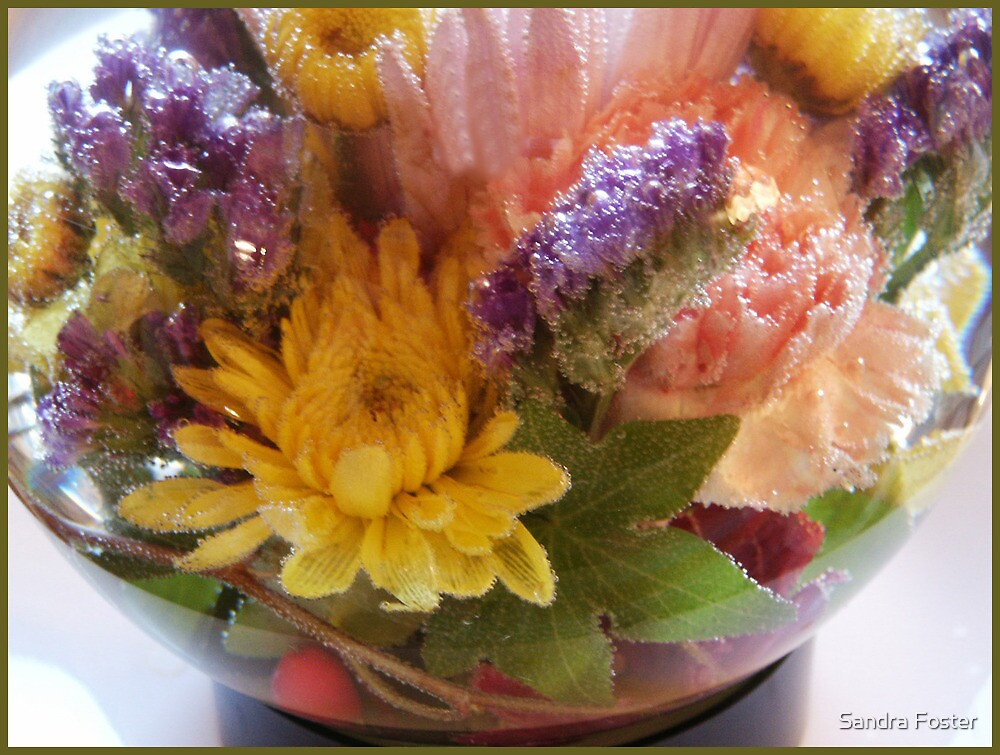 Flower Aquarium Bubbles And All by Sandra Foster