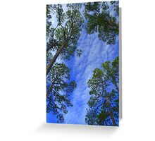 Tall Blue Sky Greeting Card