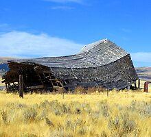Old Barn by wa7ial