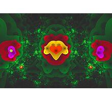 Curlscope - Nature Love Photographic Print
