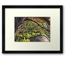 untold mystery Framed Print