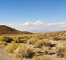Coyote Pass Towards Rachel Nevada by Henry Plumley