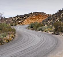 S Curves on the Parkway Through Red Rock Canyon, Summerlin, Nevada by Henry Plumley