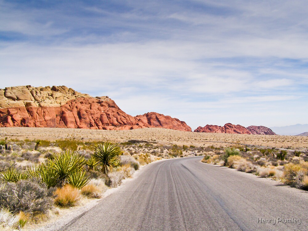 Winding Parkway by Henry Plumley