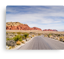 Winding Parkway Canvas Print