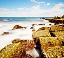 Midday Forries - Forresters Beach by Jacob Jackson