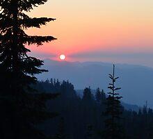 Sun Set by Sam John