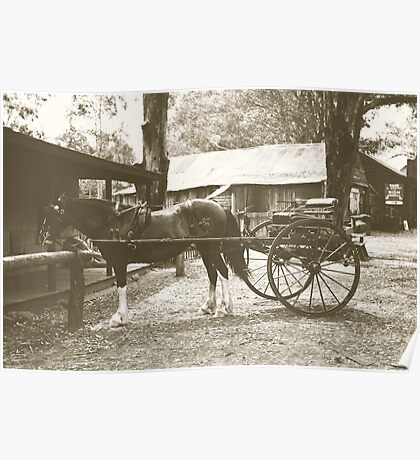 Australian Pioneer Village - Horse & Buggy Poster