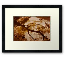 A Walk in the Rain Framed Print