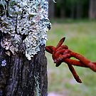 Barb Lichen by Masterclass