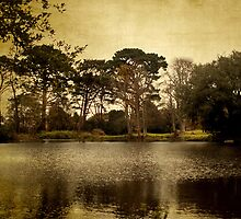 Castle Lake by Catherine Hamilton-Veal  ©