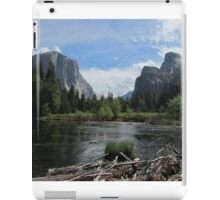 Valley Floor View  iPad Case/Skin