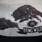 IT`S HAWGWILD (B-29 Noseart) by mike  jordan.