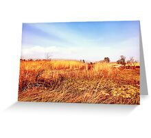 Field Of Gold - From The 'King Midas Series' Greeting Card