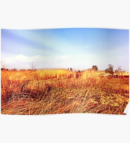 Field Of Gold - From The 'King Midas Series' Poster