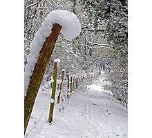 Snow Post Photographic Print