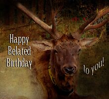 Belated Birthday (for JohnDSmith) by vigor