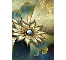 Dangling Nights With Swirling Flower Photographic Print