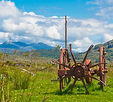 Agriculture,Farm implement, Mechanical, Hay Turner, Horse drawn, Redundant by Hugh McKean