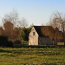 Backyard barn by 29Breizh33