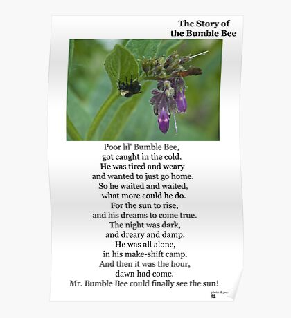 The Story of The Bumble Bee Poster