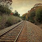 Autumn Around the Bend by Lisa Holmgreen