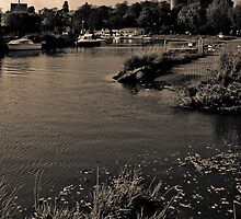 Arundel Castle from the river Arun  by paullis