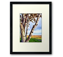 Touch of Eden Framed Print