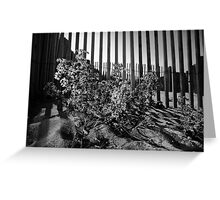 Seaside protected plant Greeting Card