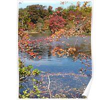 Autumn on Greenbelt Lake 2 Poster