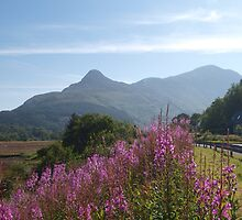 Pap of Glencoe (3) by kalaryder