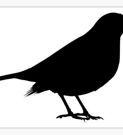 Scare Crow Sticker