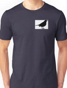 Scare Crow Unisex T-Shirt
