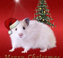 Christmas Hamster by Elaine  Manley