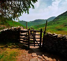 The Gate by John Hare