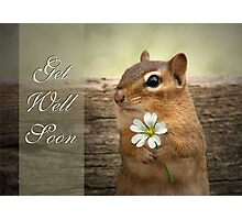 Chippy - Get Well Soon Card Photographic Print